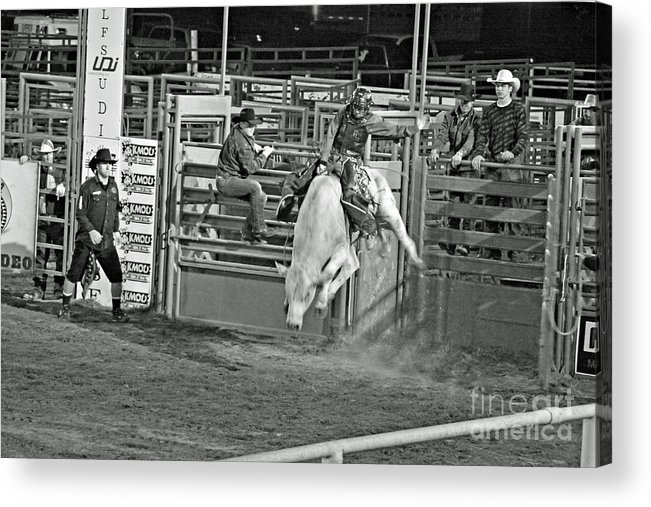 Bull Riding Acrylic Print featuring the photograph Going For 8 by Shawn Naranjo
