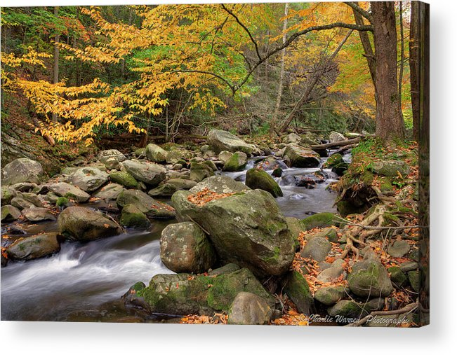 Great Smoky Mountains Acrylic Print featuring the photograph Little River I by Charles Warren