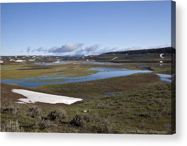 Yellowstone Acrylic Print featuring the photograph Yellowstone Plateau by Charles Warren
