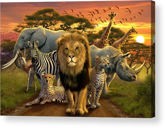 Africa Acrylic Print featuring the photograph African Beasts by Andrew Farley