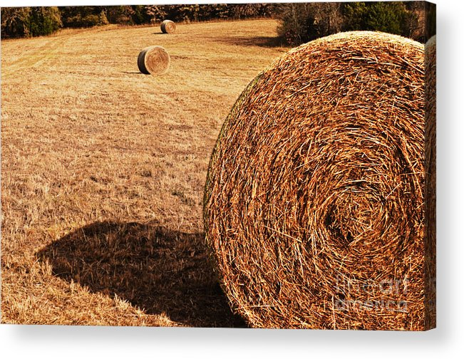 Nature Acrylic Print featuring the photograph Hay In The Field by Tamyra Ayles