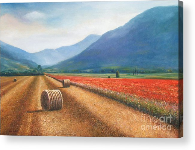 Poppies Acrylic Print featuring the painting Haybales In Italy by Ann Cockerill