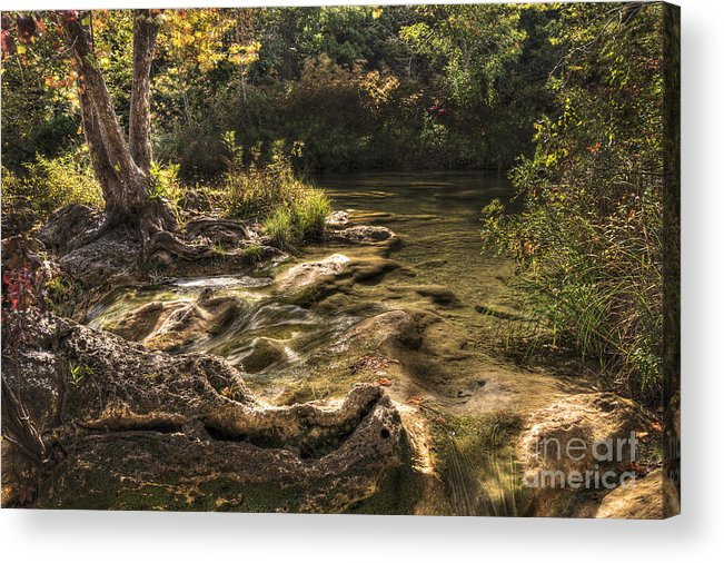 Landscape Acrylic Print featuring the photograph Private Retreat by Tamyra Ayles