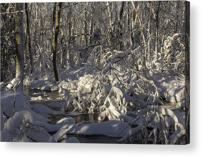 Andrew Pacheco Acrylic Print featuring the photograph Winter At Borden Brook by Andrew Pacheco