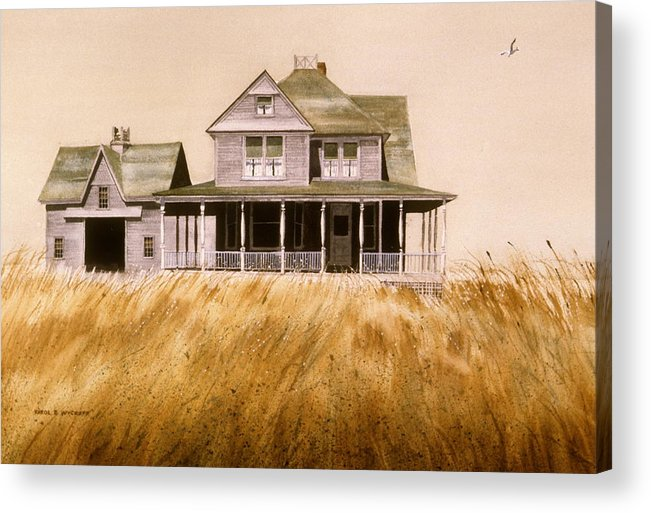 Seagull Acrylic Print featuring the painting Chatham Derelict by Karol Wyckoff