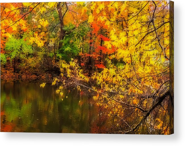 Nature Acrylic Print featuring the photograph Fall Reflection by Robert Mitchell