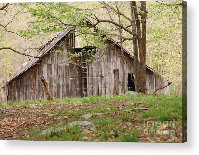 Pendleton County Acrylic Print featuring the photograph Pendleton County Barn by Randy Bodkins