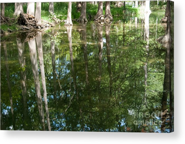 Landscape Acrylic Print featuring the photograph Reflections by Barbara Shallue