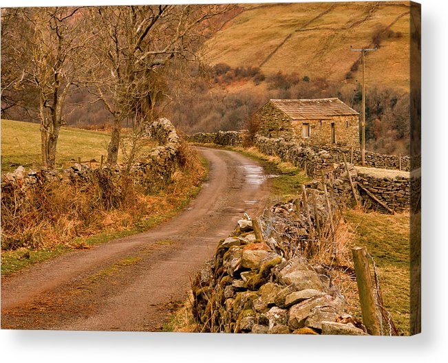 Country Acrylic Print featuring the photograph Country Lane Yorkshire Dales by Trevor Kersley