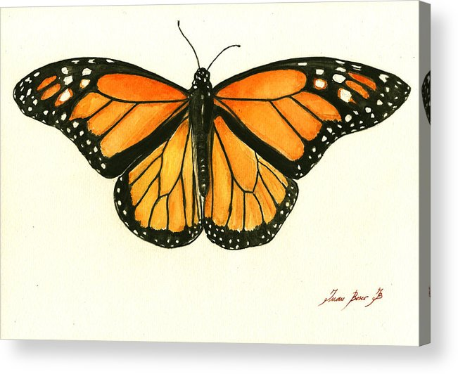Monarch Butterfly Paintings Acrylic Prints and Monarch ...