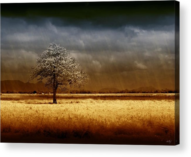 Landscapes Acrylic Print featuring the photograph And The Rains Came by Holly Kempe
