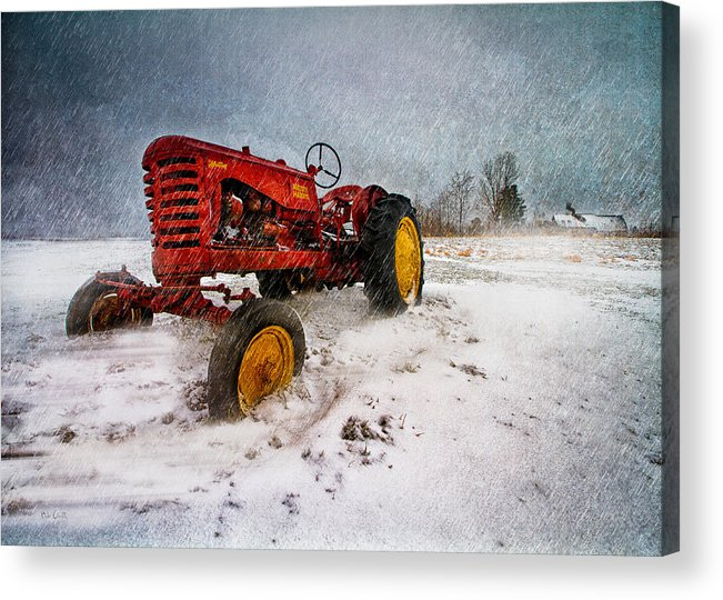 Transportation Acrylic Print featuring the photograph Massey Harris Mustang by Bob Orsillo