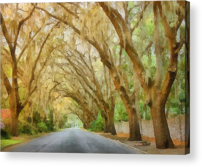 Spanish Acrylic Print featuring the painting Spanish Moss - Symbol Of The South by Christine Till