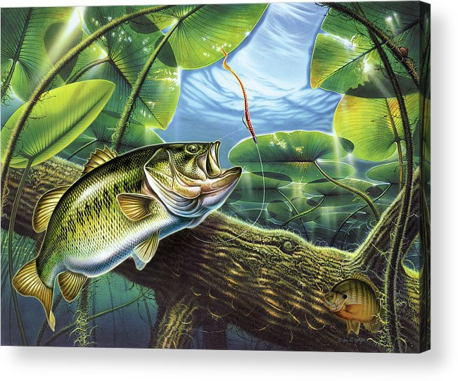 Jon Q Wright Fish Fishing Bass Largemouth Lure Lily Pads Lake Angling Bluegill Log Underwater Acrylic Print featuring the painting Fooled Again Bass II by JQ Licensing