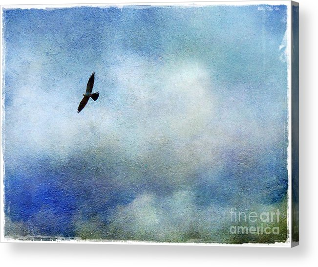 Mississippi Acrylic Print featuring the photograph Far Above by Judi Bagwell