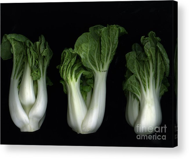 Slanec Acrylic Print featuring the photograph Bok Choy by Christian Slanec