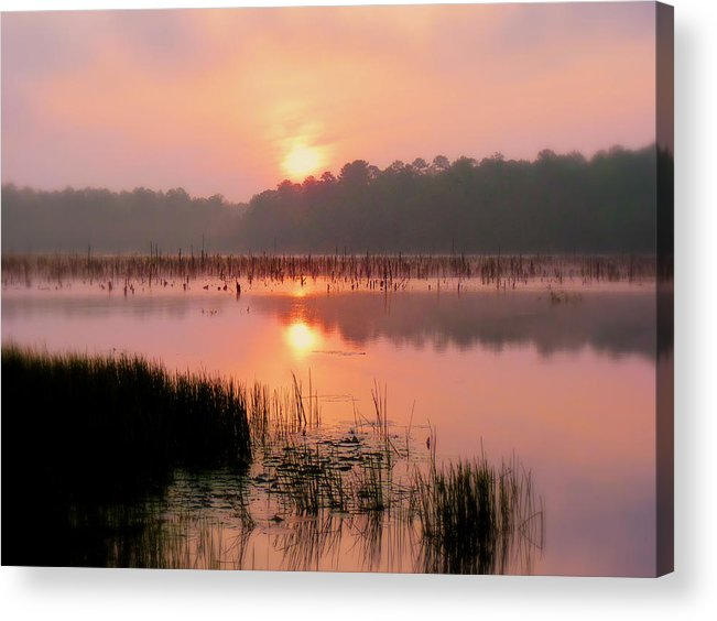 Alabama Acrylic Print featuring the photograph A Wetlands Sunrise by JC Findley