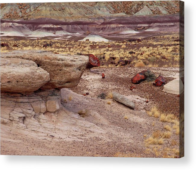 Jim Acrylic Print featuring the photograph Purple Earth by James Peterson