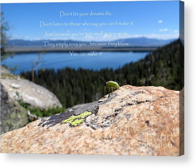 Inspiration Point Acrylic Print featuring the photograph You Can Make It. Inspiration Point by Ausra Huntington nee Paulauskaite