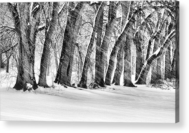 The Noreaster Acrylic Print featuring the photograph The Noreaster Bw by JC Findley