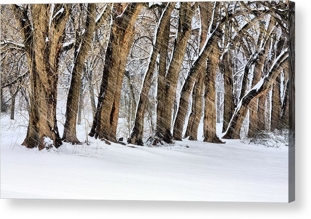The Noreaster Acrylic Print featuring the photograph The Noreaster by JC Findley