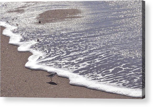 Summer Acrylic Print featuring the photograph Summer Shimmer by Cindy Lee Longhini
