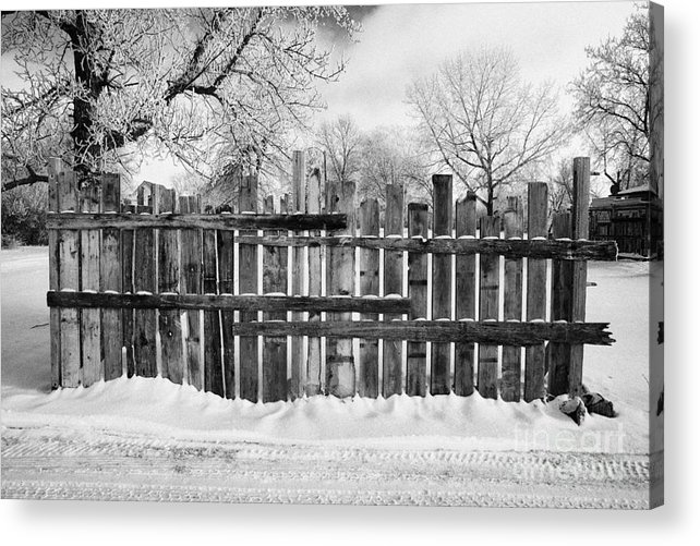 Old Acrylic Print featuring the photograph old patched up wooden fence using old bits of wood in snow Forget Saskatchewan by Joe Fox