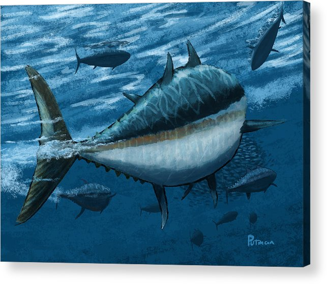 Tuna Acrylic Print featuring the digital art The Chase by Kevin Putman