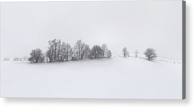 Winter Acrylic Print featuring the photograph Winter Tree Line In Indiana by Julie Dant