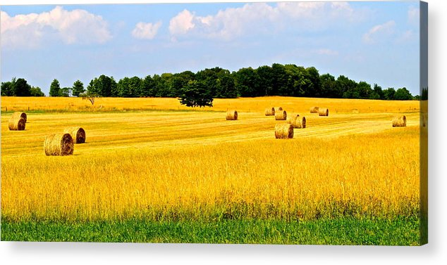 Farm Acrylic Print featuring the photograph Eldorado by Frozen in Time Fine Art Photography