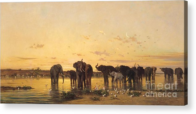 African Elephants (oil On Canvas) By Charles Emile De Tournemine (1812-72) Acrylic Print featuring the painting African Elephants by Charles Emile de Tournemine