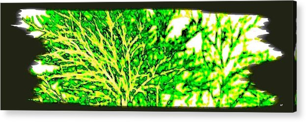 Arbres Verts Acrylic Print featuring the digital art Arbres Verts by Will Borden