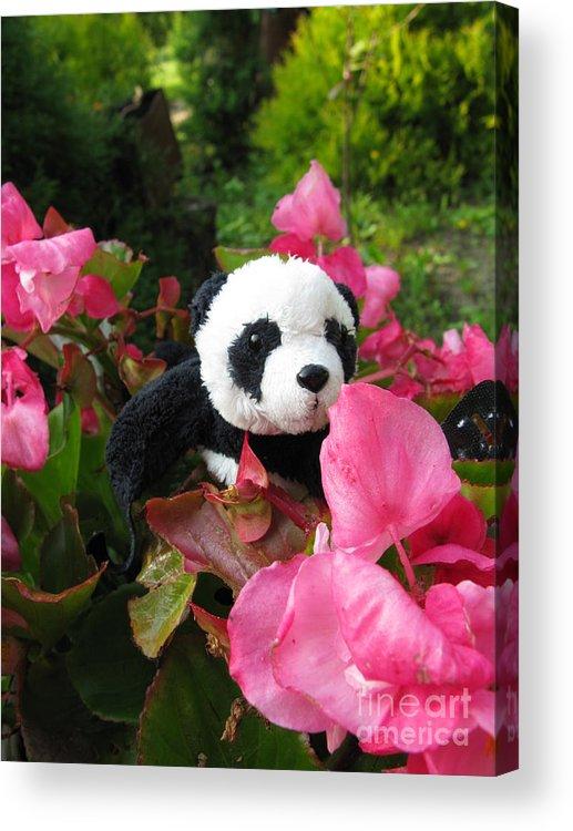 Baby Panda Acrylic Print featuring the photograph Lovely Pink Flower by Ausra Huntington nee Paulauskaite