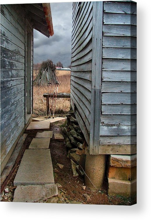 Dog Trots Acrylic Print featuring the photograph The Dog Trot by Julie Dant