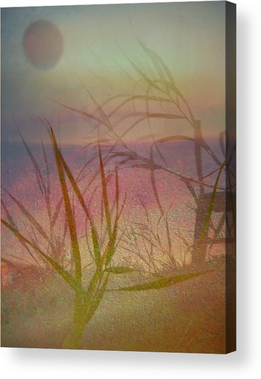 Scenery Acrylic Print featuring the photograph Windswept by Shirley Sirois