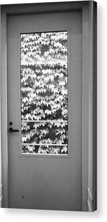 Ivy Acrylic Print featuring the photograph Ivy Door by Anna Villarreal Garbis