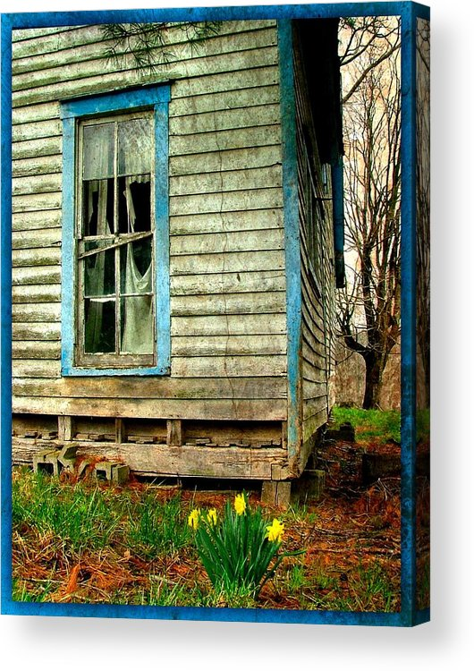Daffodyls Acrylic Print featuring the photograph Grandma's Daffodyls by Julie Dant