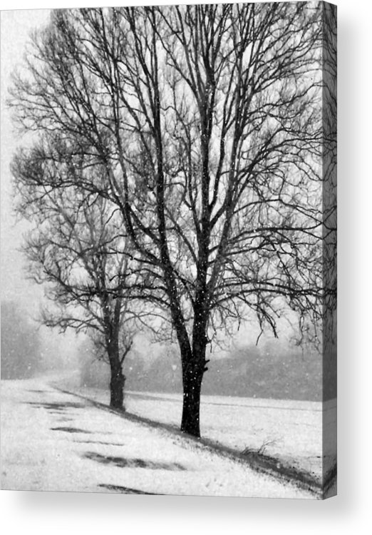 Indiana Acrylic Print featuring the photograph Slow Going I by Julie Dant