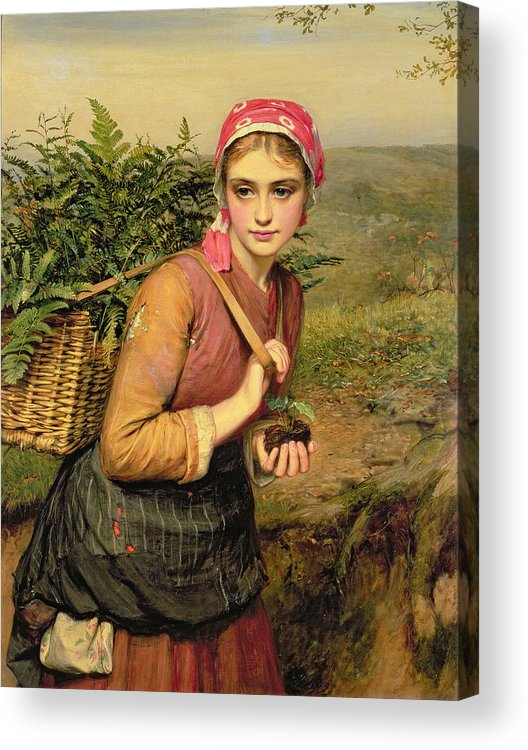 The Fern Gatherer Acrylic Print featuring the painting The Fern Gatherer by Charles Sillem Lidderdale