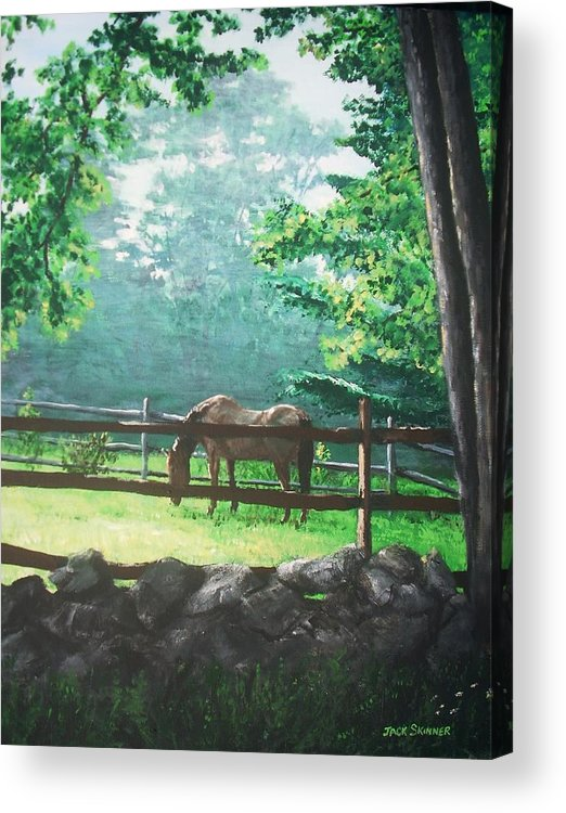 Horse Acrylic Print featuring the painting Morning Pasture by Jack Skinner