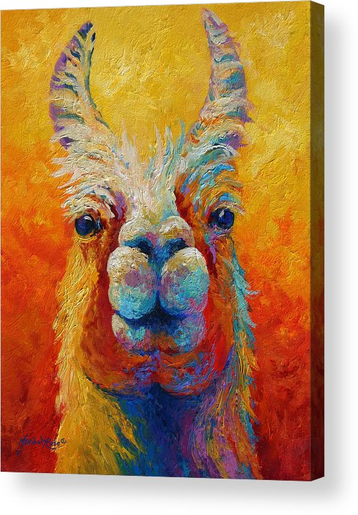 Llama Acrylic Print featuring the painting You Lookin At Me by Marion Rose