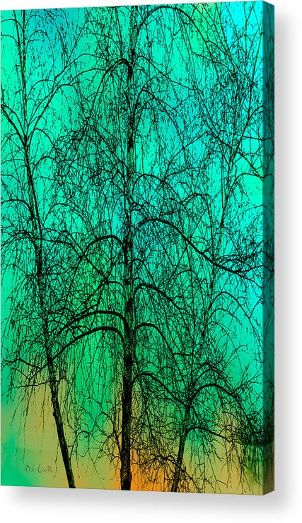 Abstract Acrylic Print featuring the photograph Change Of Seasons by Bob Orsillo