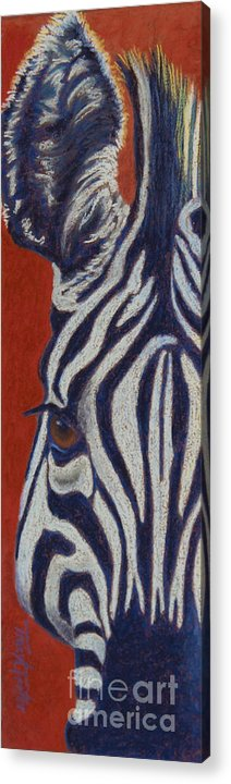 Zebra Acrylic Print featuring the pastel African Stripes by Tracy L Teeter