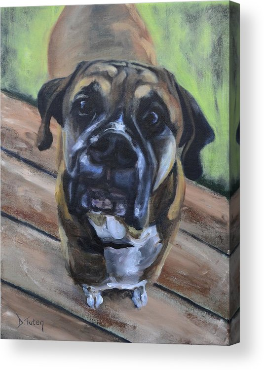 Boxer Acrylic Print featuring the painting Lugnut by Donna Tuten