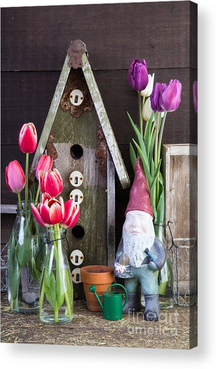 Barn Acrylic Print featuring the photograph Inside The Garden Shed by Edward Fielding