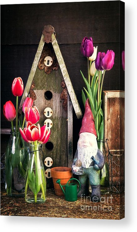 Barn Acrylic Print featuring the photograph Inside The Potting Shed by Edward Fielding