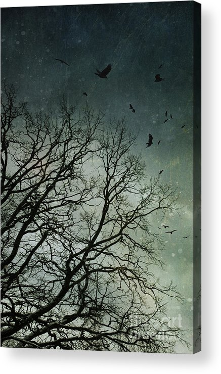 Atmosphere Acrylic Print featuring the photograph Flock Of Birds Flying Over Bare Wintery Trees by Sandra Cunningham