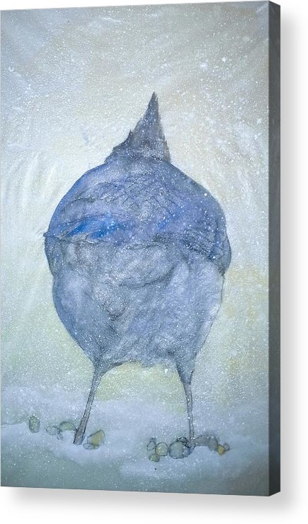Painting Acrylic Print featuring the painting Stellar Jay From Back by Debbi Chan