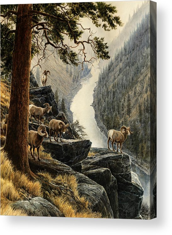 Salmon River Acrylic Print featuring the painting Above The River by Steve Spencer