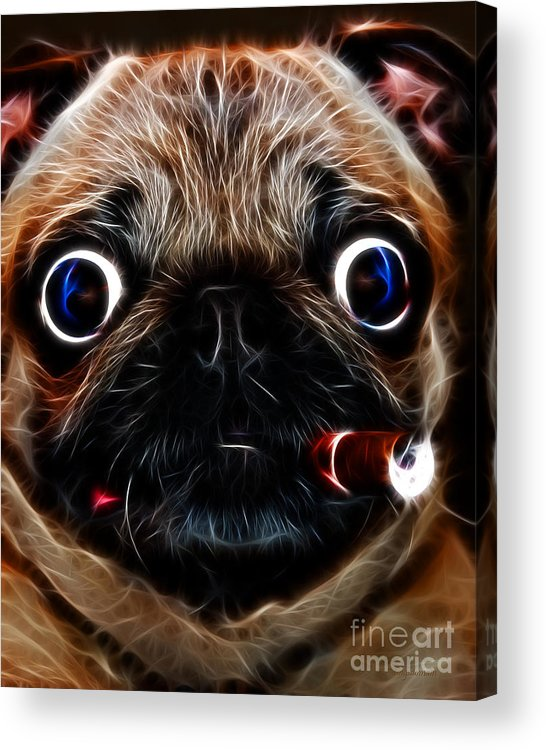 Animal Acrylic Print featuring the photograph Cigar Puffing Pug - Electric Art by Wingsdomain Art and Photography